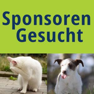 Gassitrupp @ Tierheim Siegen | Siegen | Nordrhein-Westfalen | Deutschland